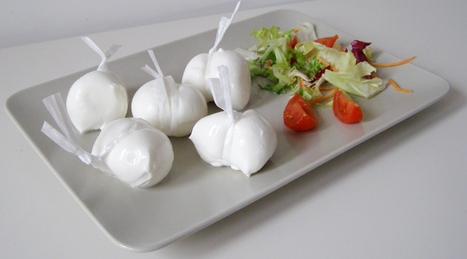 Italian Fresh raw milk mozzarella