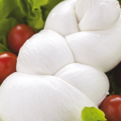 Italian Fresh mozzarella made of DOP buffalo's milk in tray of 250 g - case of 4 kg